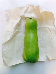 Picture of Fresh Lauki (bottle gourd) 1-1.5lb sizes(Only Fri-Sat)